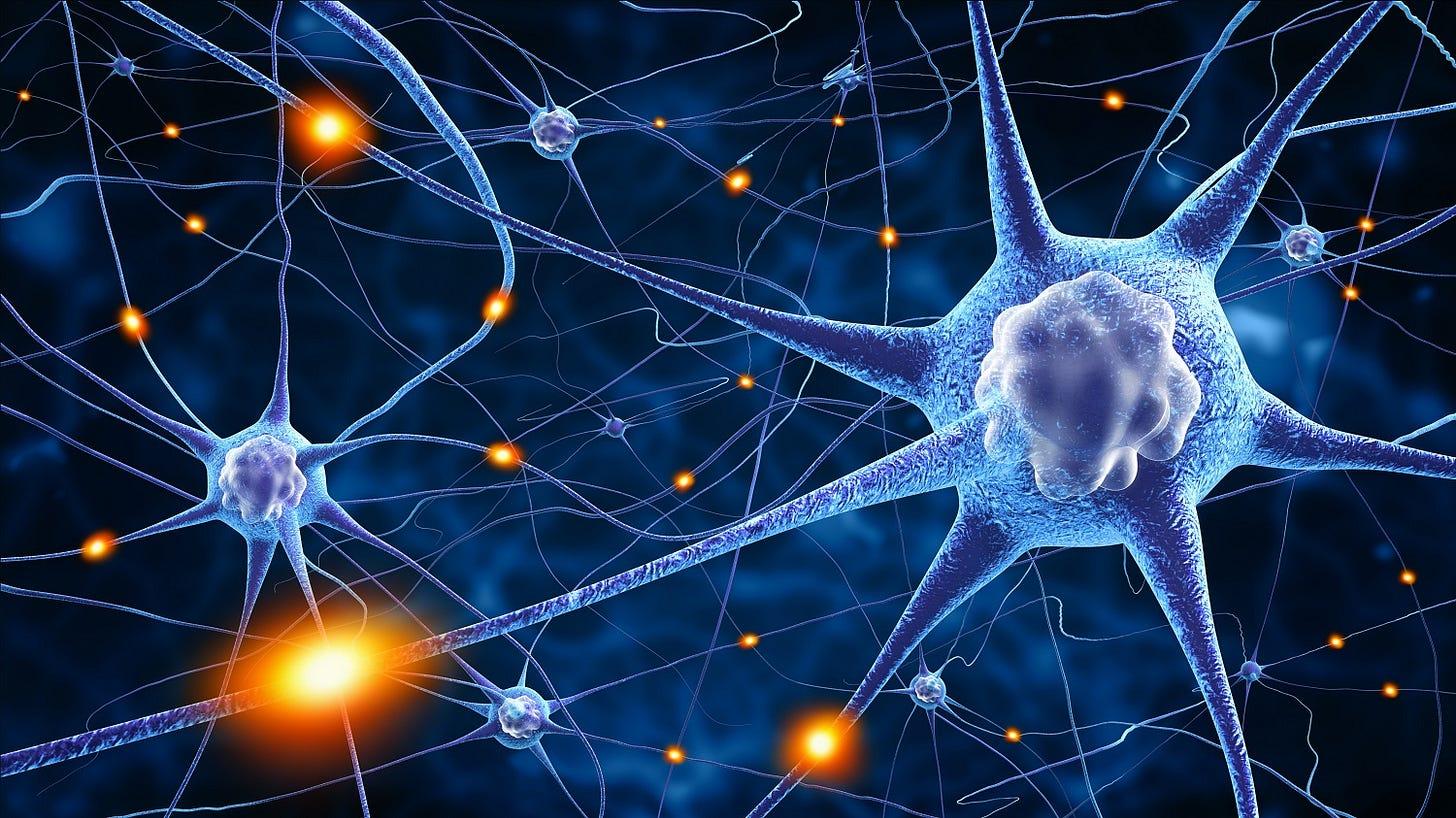 7 Major Developments in Neuroscience of 2017 | NeuroTracker