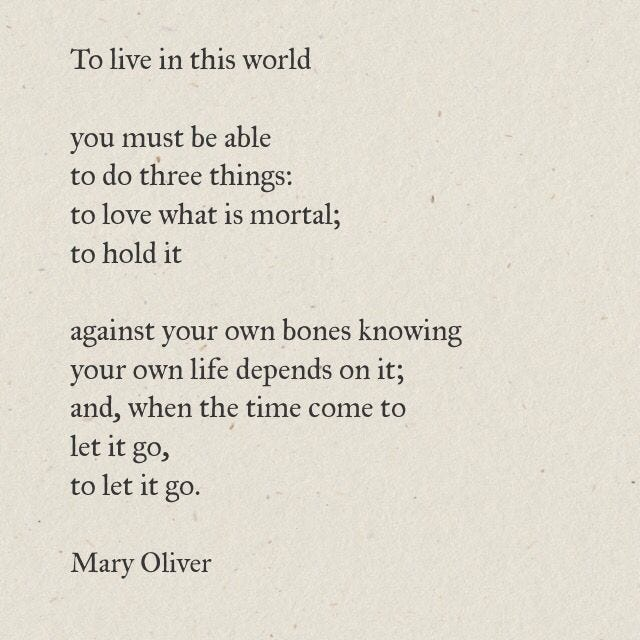Excerpt from In Blackwater Woods by Mary Oliver // To live in this world  you must be able to do three things: … | Mary oliver quotes, Letting go  poems, Words quotes