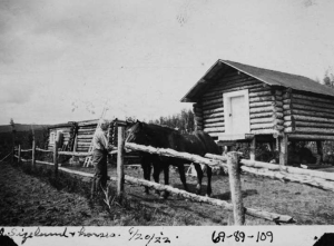 "Photo caption: ""Sizeland + horses, 6/20/'22."" Bottom left corner of this photo is torn off along with some writing. This photo shows a man on the left side of a fence with his right arm extended, hand upright, feeding two horses fenced in on the other side. Behind the horses are a cache with a painted door, and a flat-roofed log building. [UAF-1969-89-109]"
