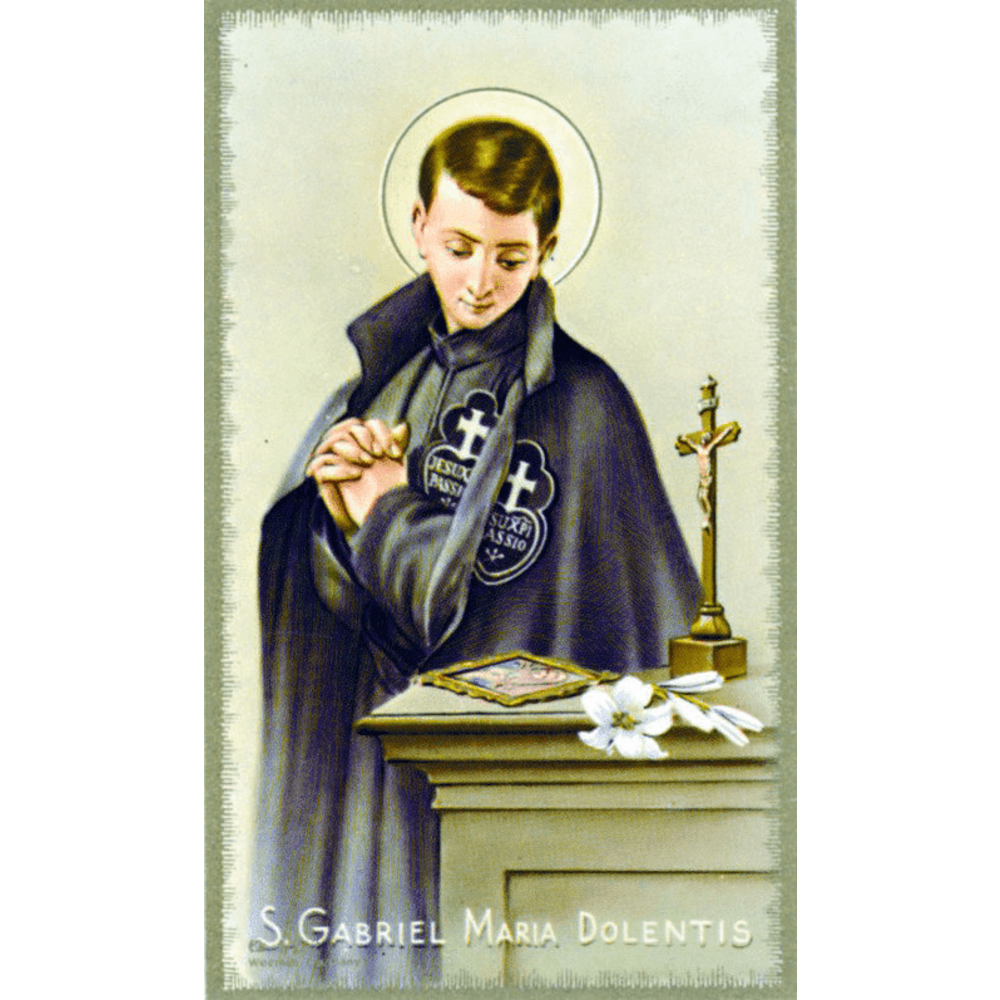 Image result for st gabriel of our lady of sorrows