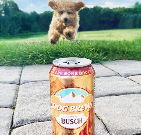 Dog Brew by Busch   All-Natural Bone Broth for Dogs