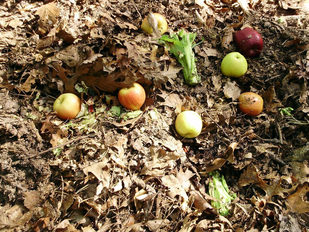 """""""Compost Pile"""" by Mullica is licensed under CC BY-NC 2.0"""
