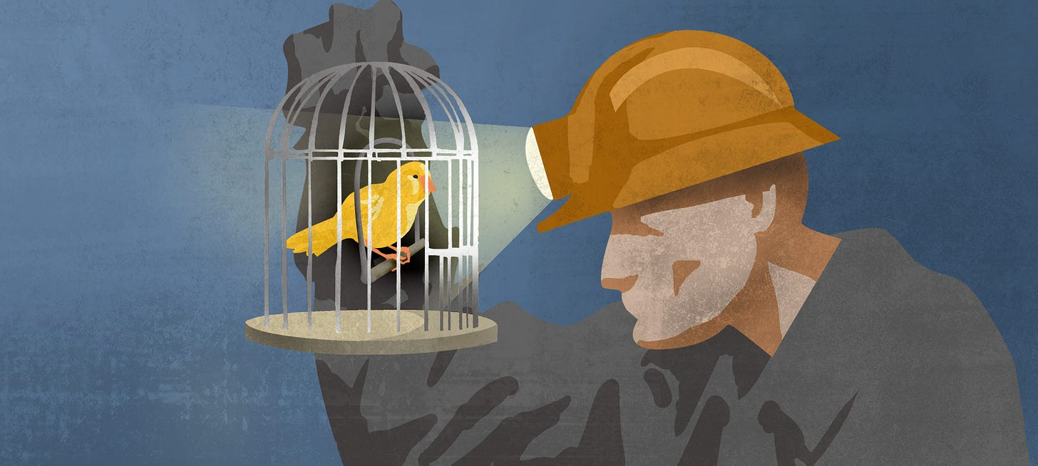 Idioms in the News: Canary in the Coal Mine | ShareAmerica