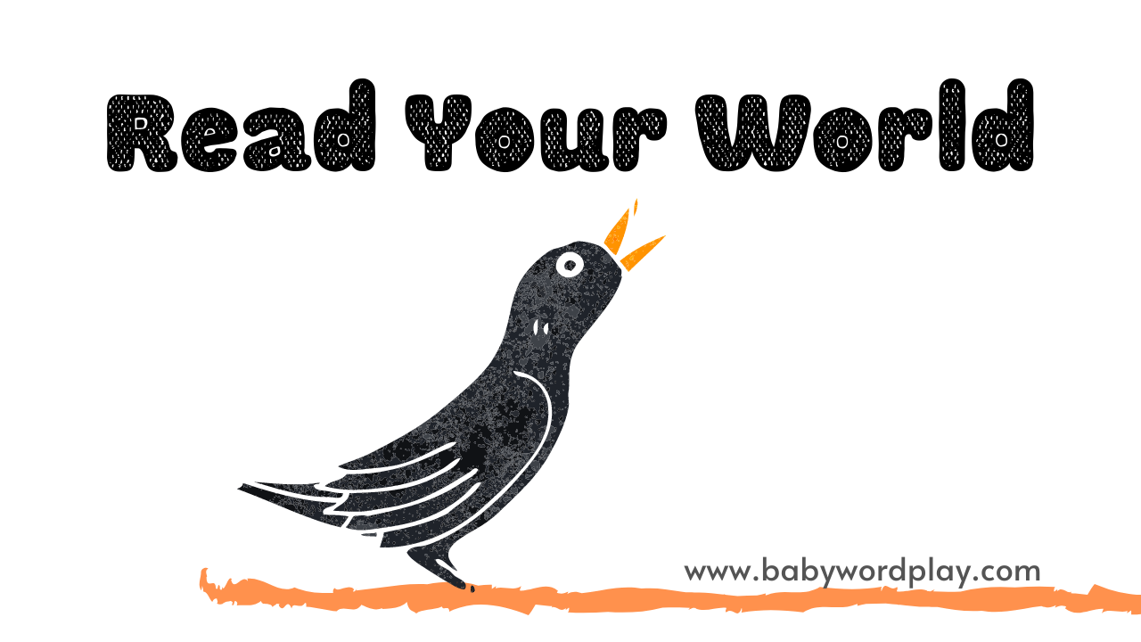 Read Your World with Baby Wordplay