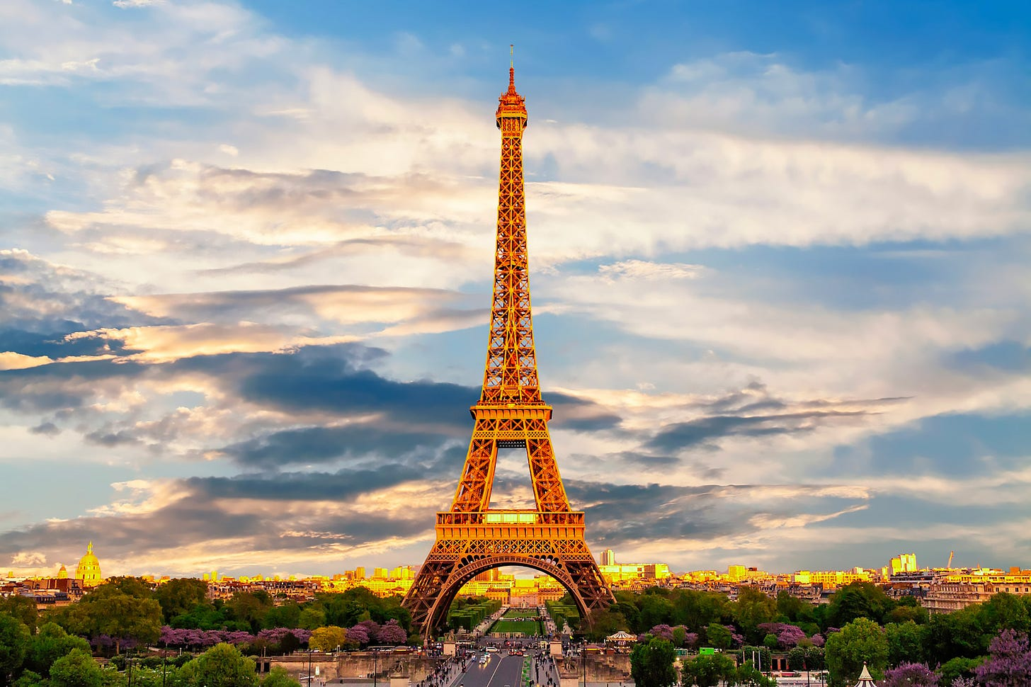 The Eiffel Tower will now produce its own wine