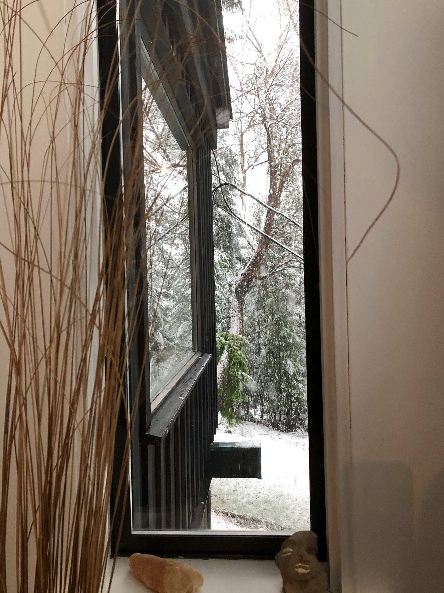 View from indoors toward the snowy trees