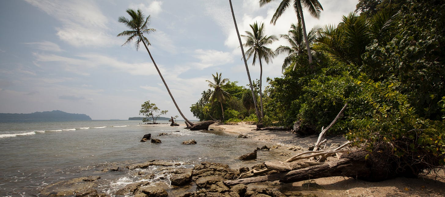 Coastal erosion on the Solomon Islands (photo: Alex DeCiccio) The Planet newsletter climate and security in UNSC