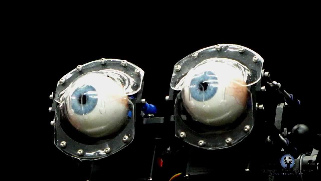 Automatic Eyelid Tracking Animatronic Robotic Eyes - YouTube
