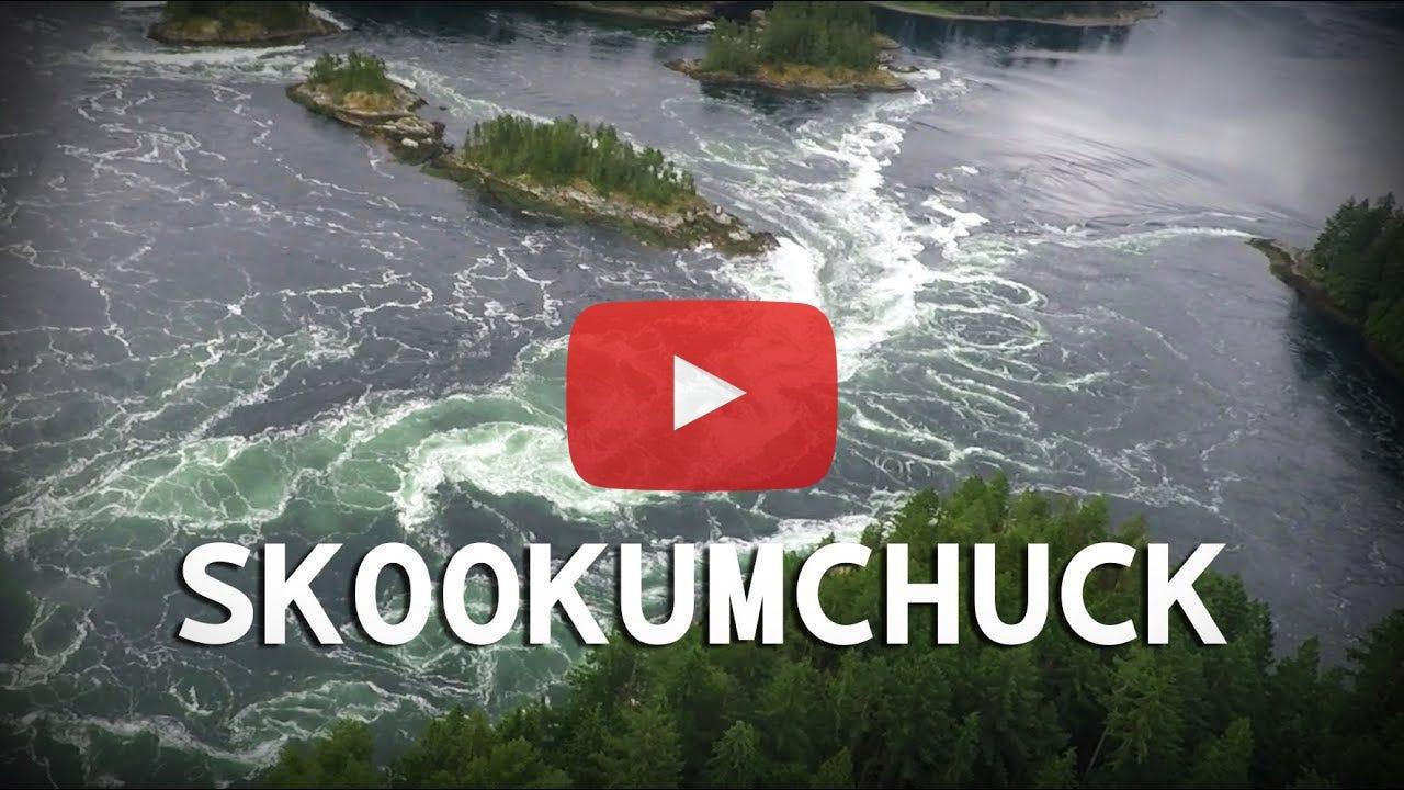 Skookumchuck Narrows as seen from above in a floatplane.