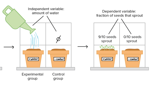 Controlled experiments (article) | Khan Academy