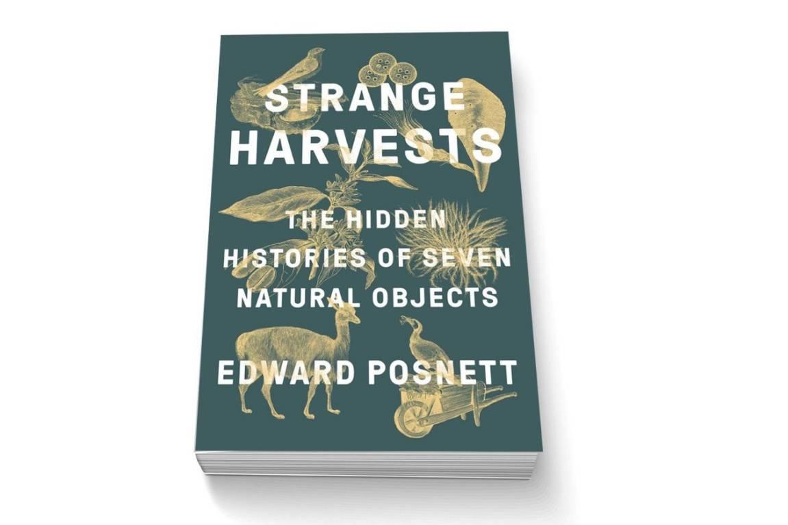 Book review: Strange Harvests by Edward Posnett | Stuff.co.nz
