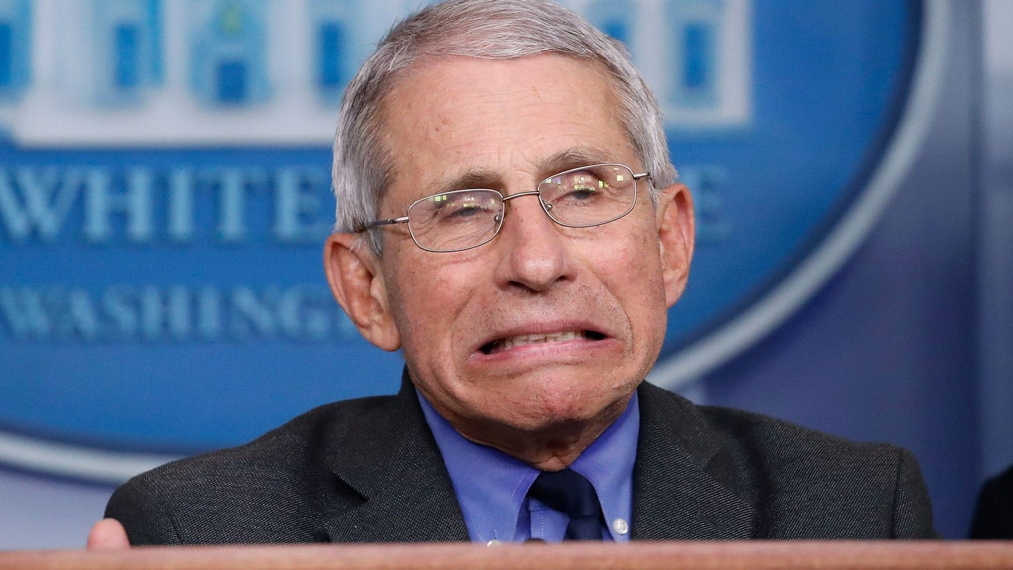 Seinfeld' Producer George Shapiro Looks Like Anthony Fauci And Conan Has  Fun With It | HuffPost