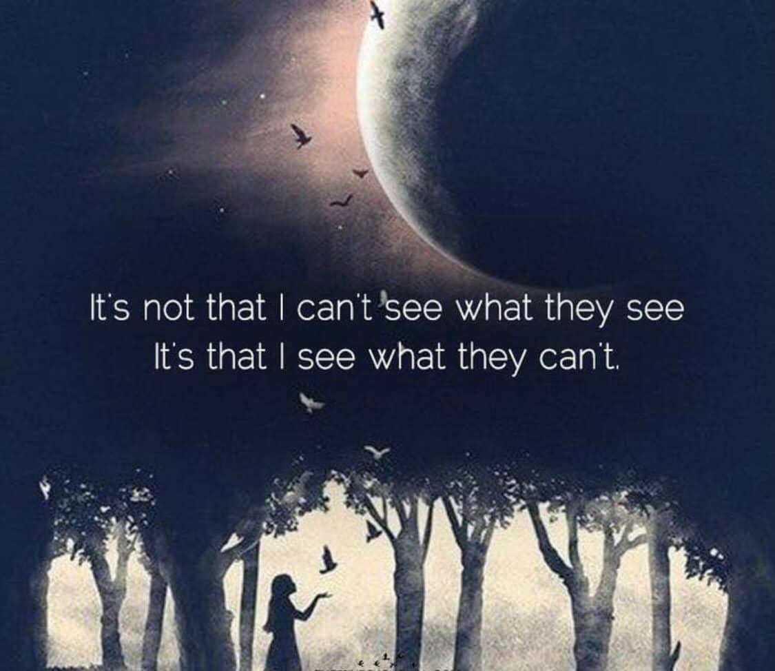 May be an image of text that says 'It's not that I can't see what they see It's that see what they can't.'