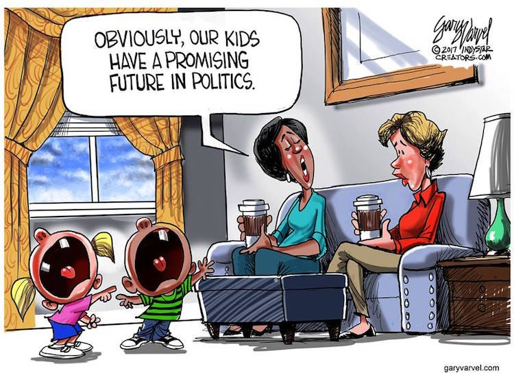 SAD: Cartoon Shows What's Become of Politics in 2017