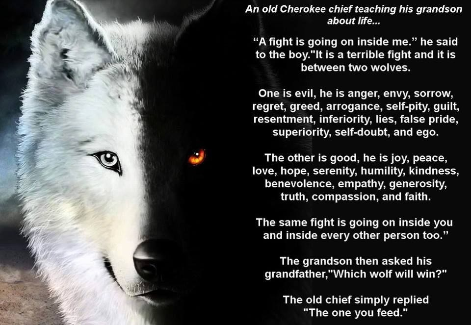 Image result for parable two wolves