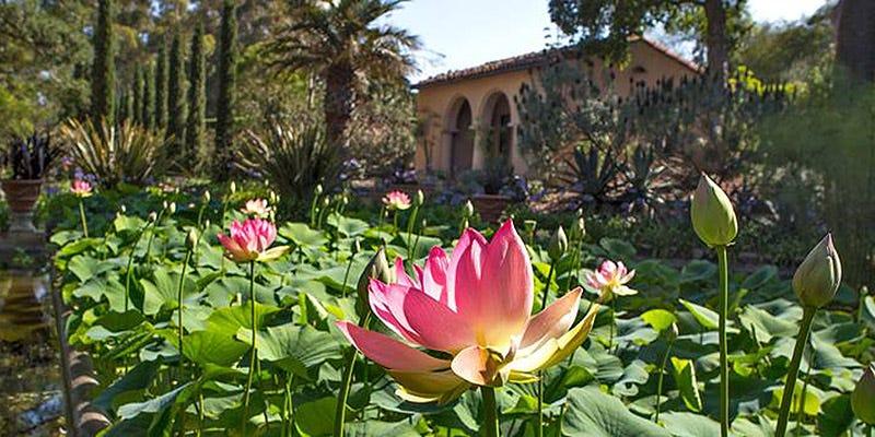Lotusland Gardens – Montecito, CA – WineCountry.com
