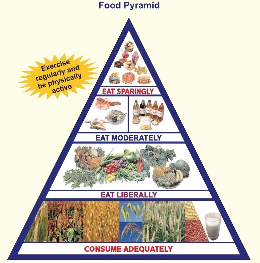 DietaryGuidelinesforNINwebsite.jpg