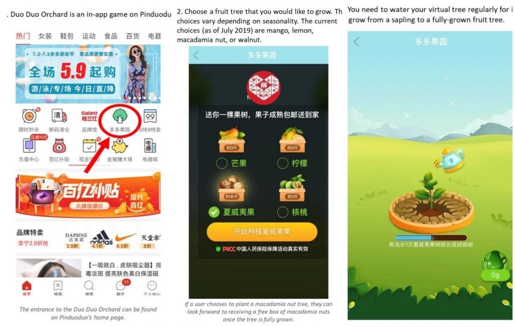Pinduoduo is helping the agricultural industry thrive - Ecommerce China