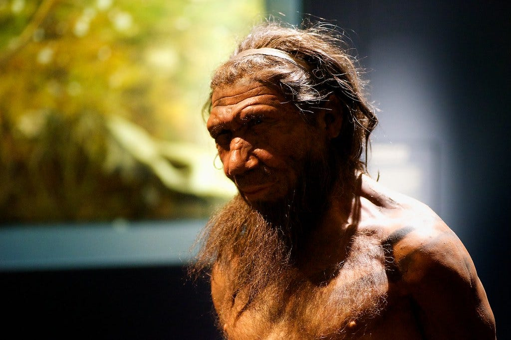Our Cousin -Neanderthal | Britain: One Million Years of the … | Flickr