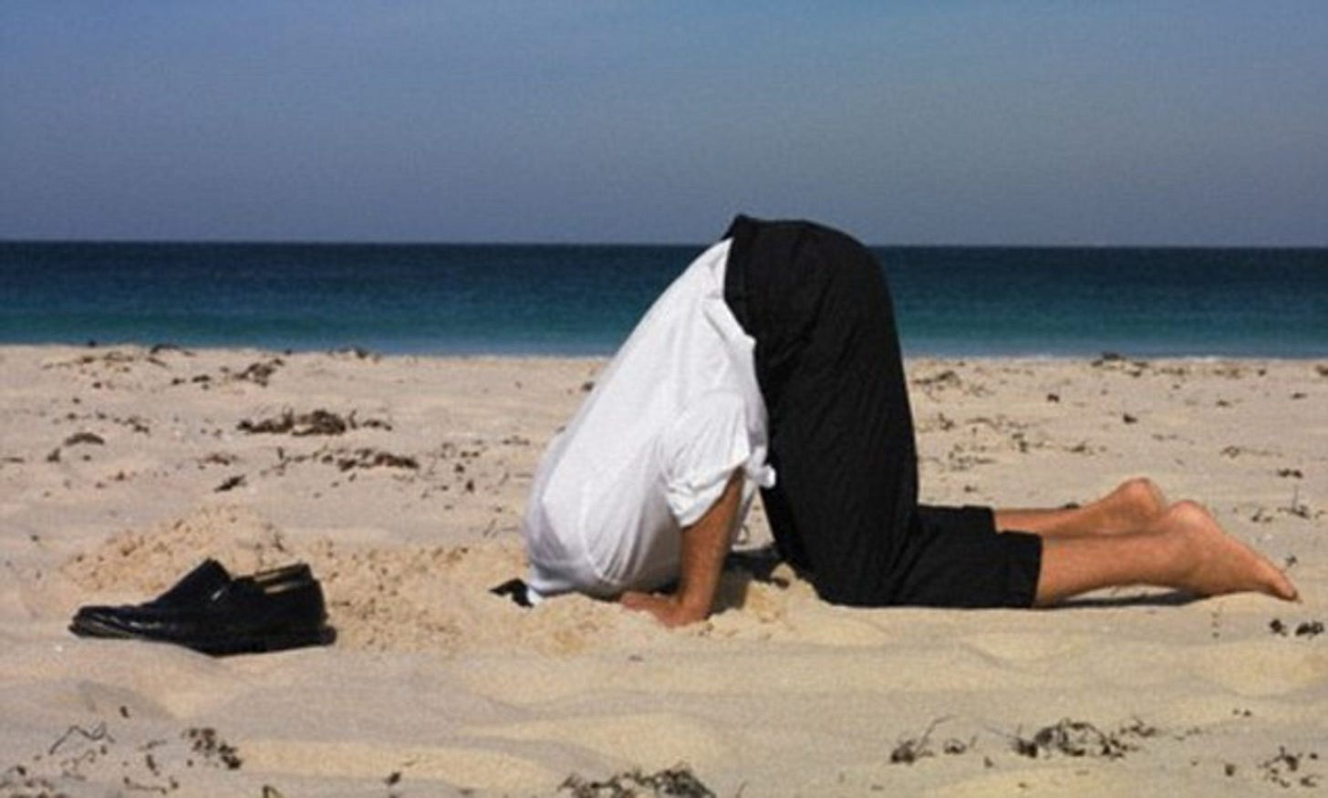 Burying your head in the sand? You're feeling guilty   Daily Mail Online