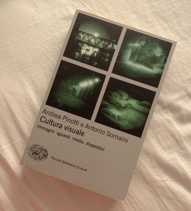 Cultura visuale di Andrea Pinotti e Antonio Somaini