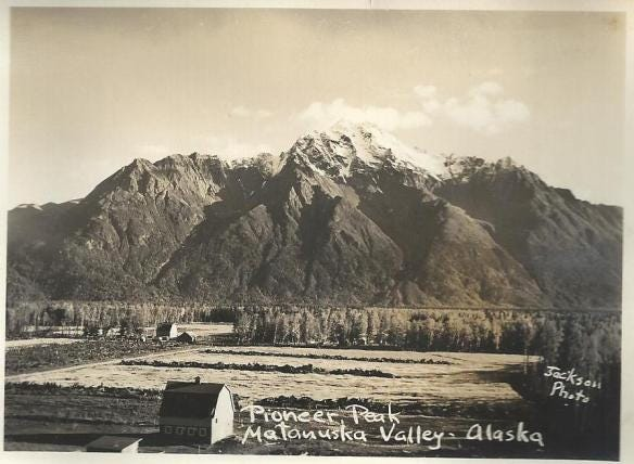 The barn in the foreground is the Otto Peterson barn, the one in the center of the photo would be the Archer barn. The Parks barn was just out of the photo on the left side.
