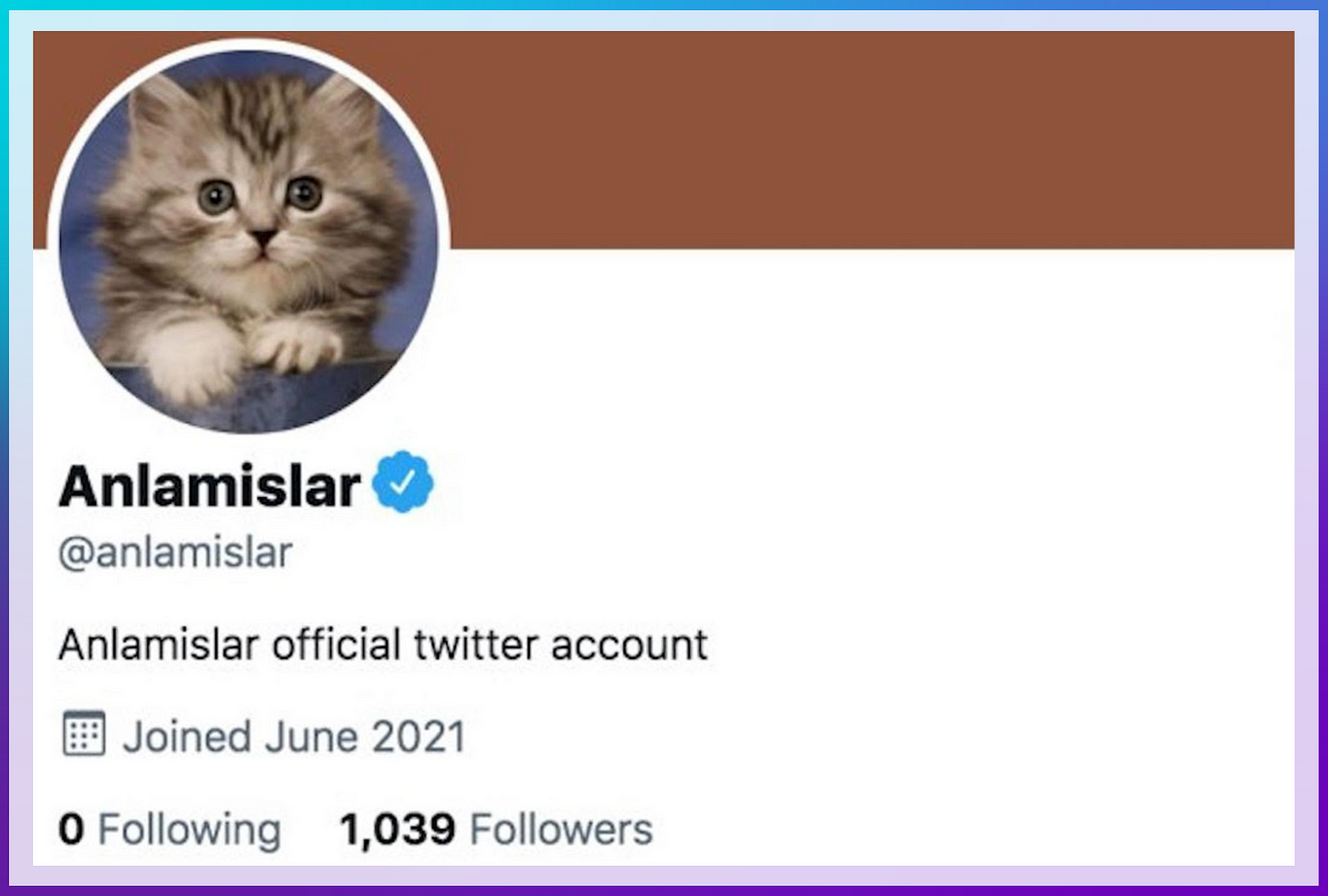 Image: Fake User Profile of Cat Verified By Twitter with Blue Check. Color: Blue. Direction: Left to Right. Anlamislar @anlamislar Anslamislar official twitter account. Joined June 2021. 0 Following. 1,039 Followers.