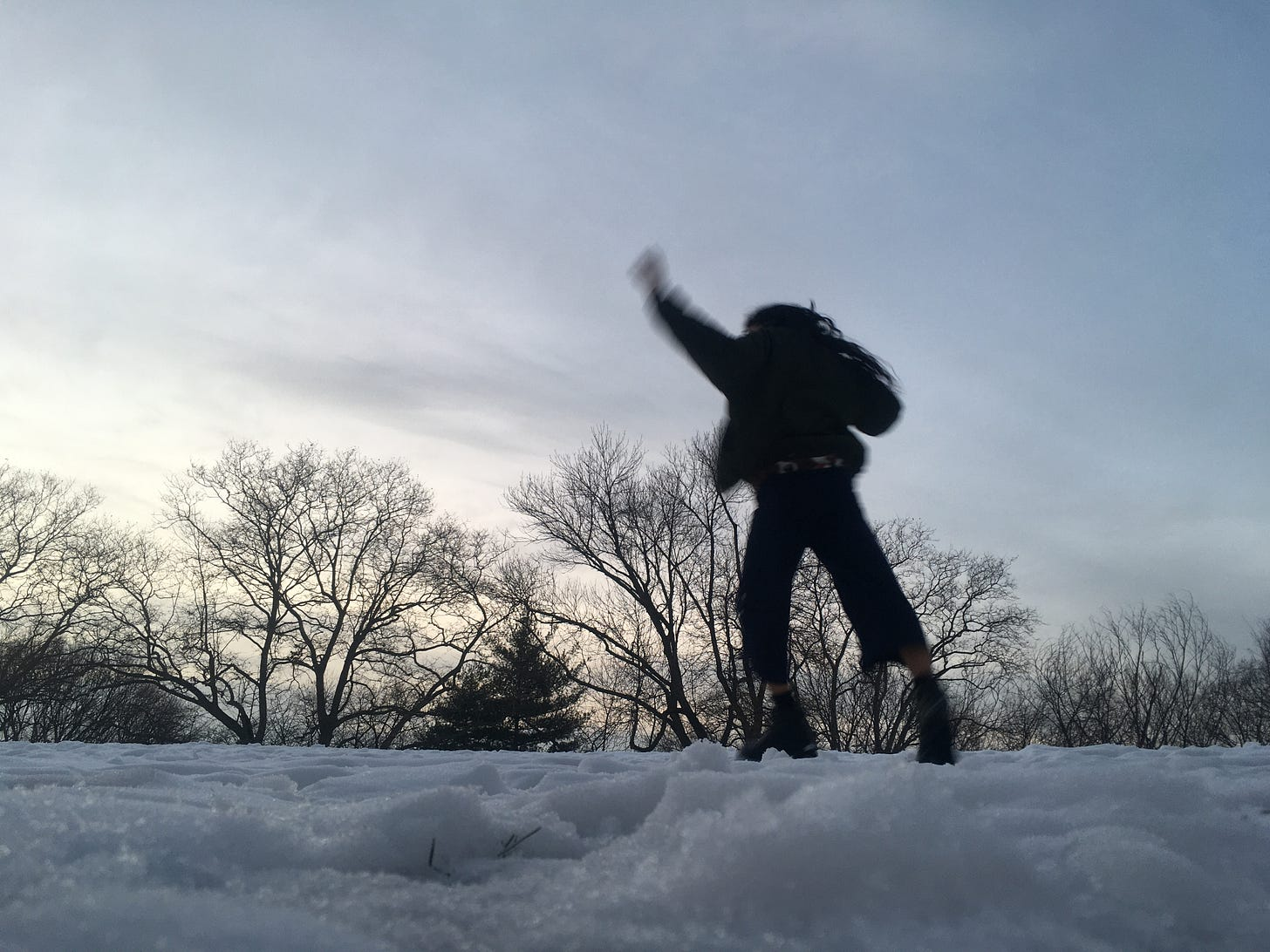 photo by me:  me keeping my weight above the ground covered in snow, left leg slightly bent, left arm raised, with bare trees in the background