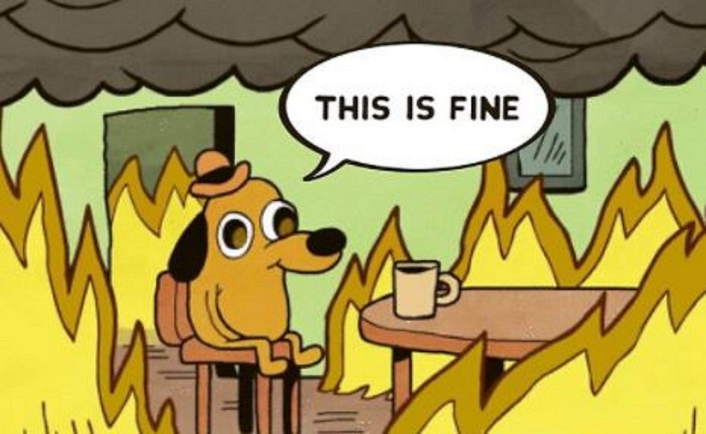 This is fine mask | This is fine dog, This is fine meme, Cartoon pics