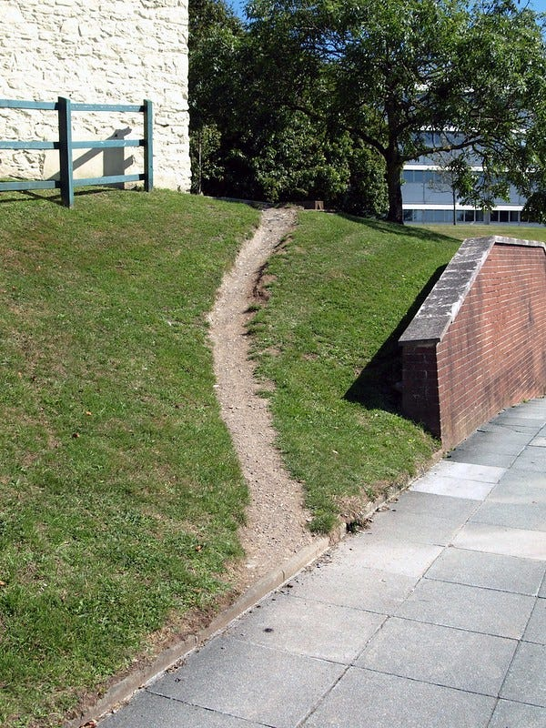 A Desire path (i.e. a path that's worn into the ground that users take that differs from the paths that urban planners lay out) that goes up a hill. There is a sidewalk at the bottom of the hill heading to the right and university buildings behind, but the desire path goes through the grass and up the hill.