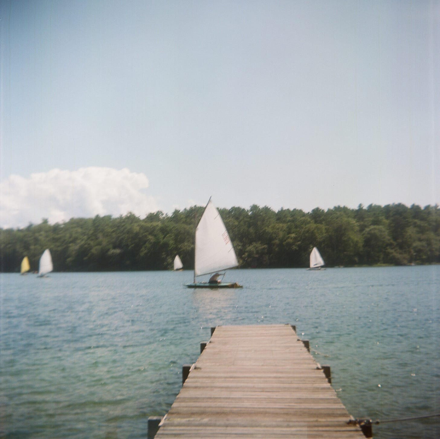 A sailboat on a pond