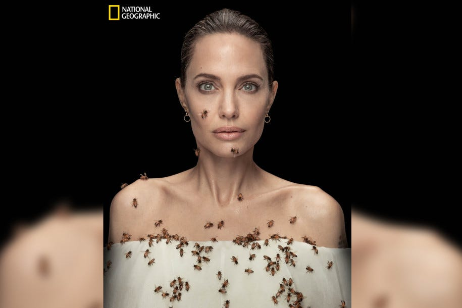 Portrait of Angelina Jolie in a white wrap just below the shoulders, partly covered with bees.