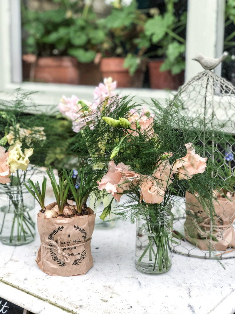Styling spring bulbs to brighten winter.