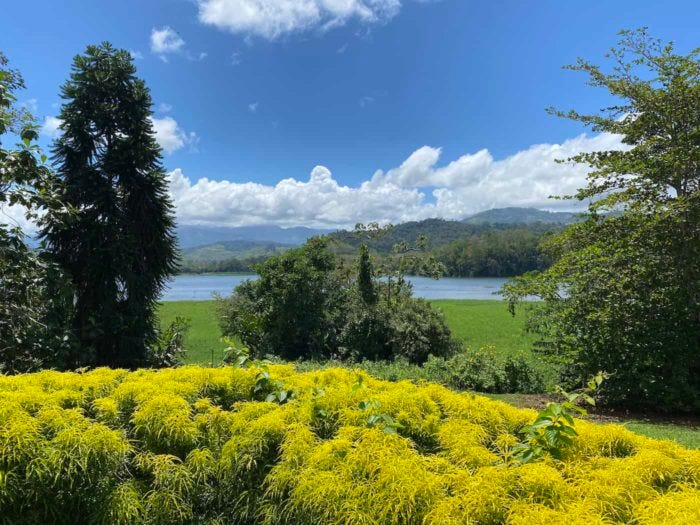View of Angostura Lagoon from Casa Turire in Turrialba.