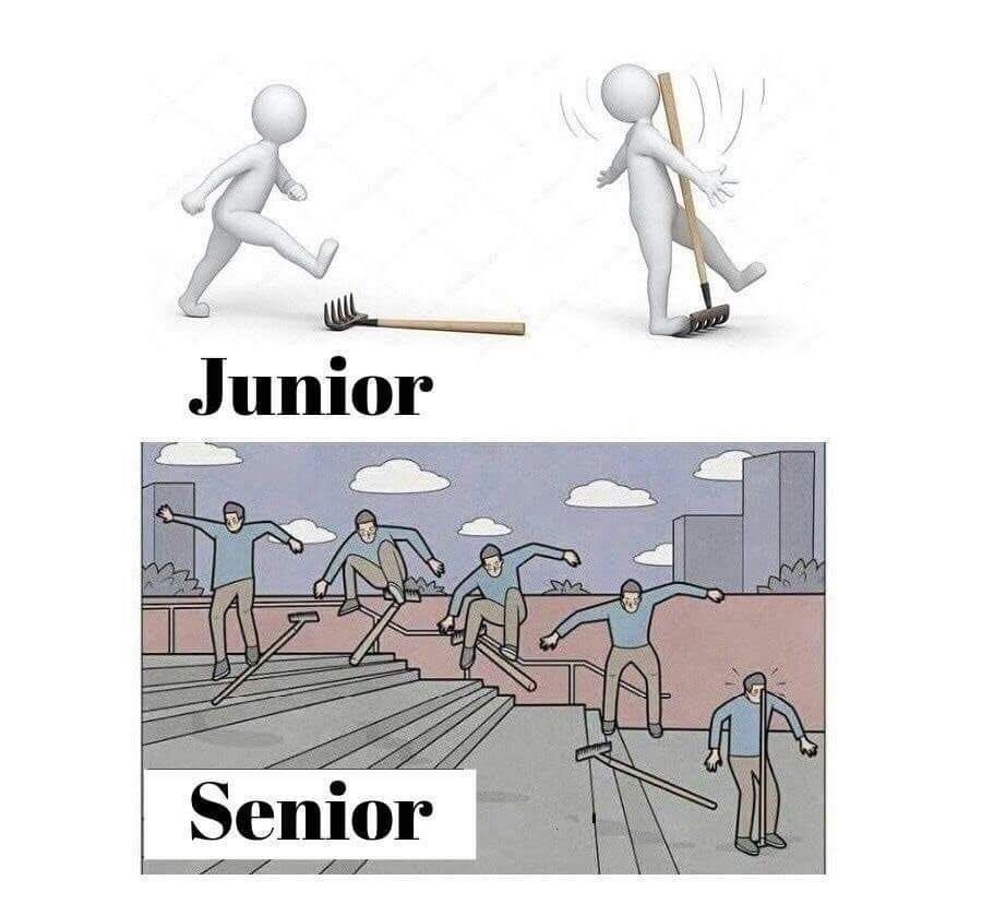A difference between Junior and Senior #developer #programmer  #softwareenegineer | Funny memes, Memes, Funny pictures
