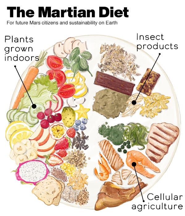 The Martian Diet. Illustration of a plate with various foods