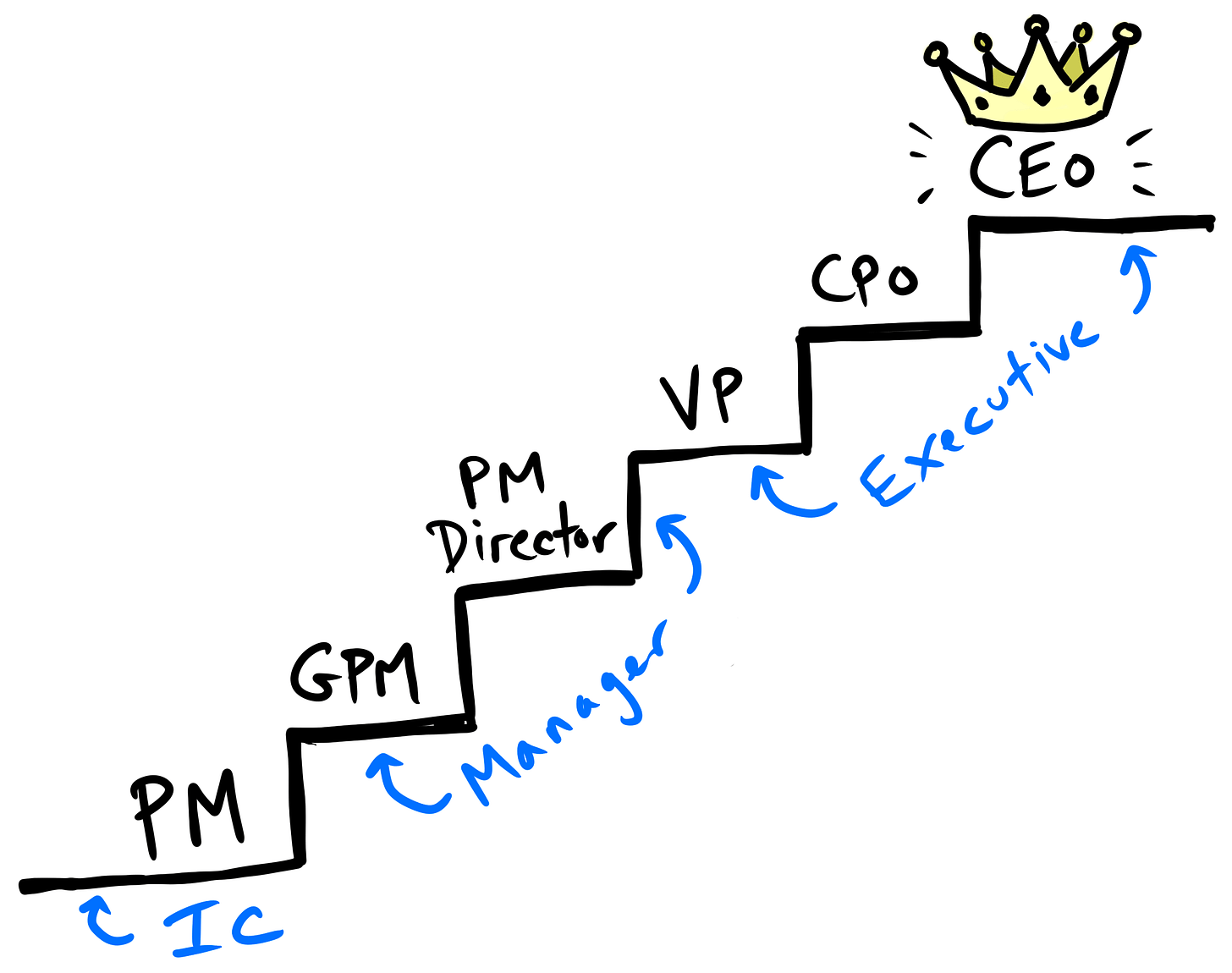 Typical product manager career path: PM → GPM → PM Director → VP/CPO → CEO/Founder