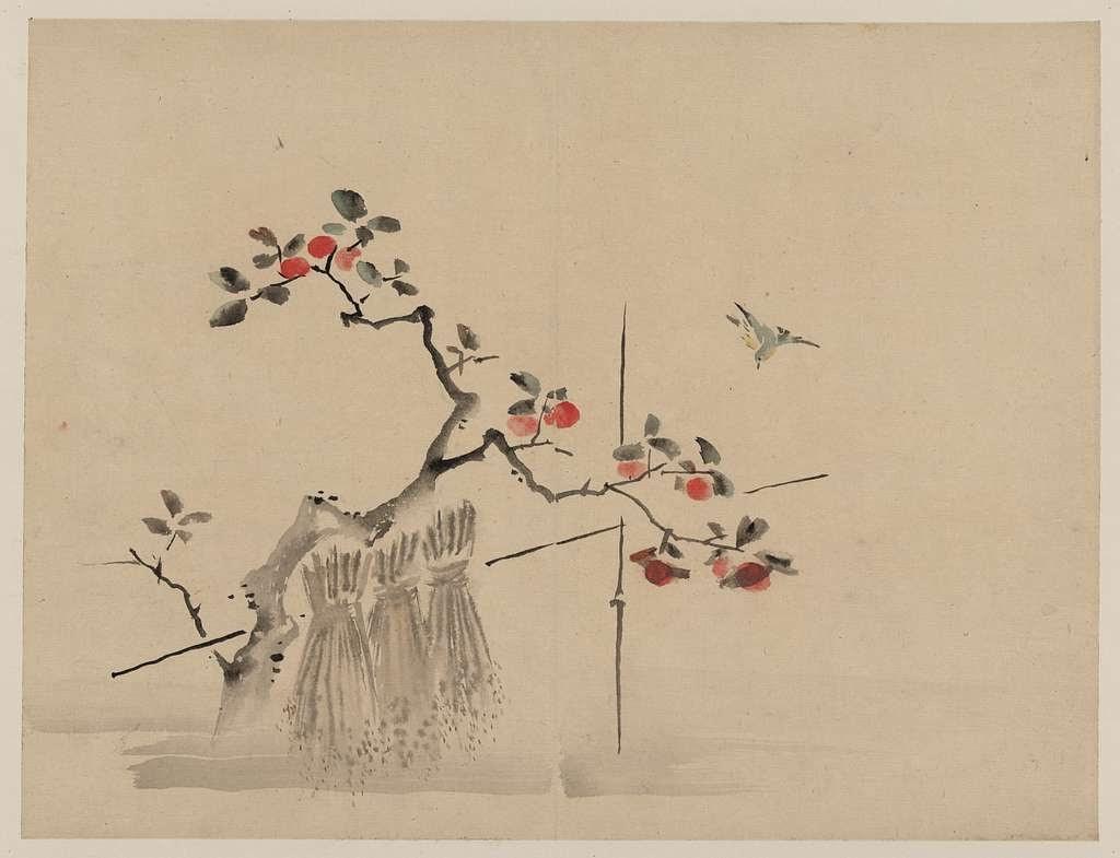 Fruit tree, bird.