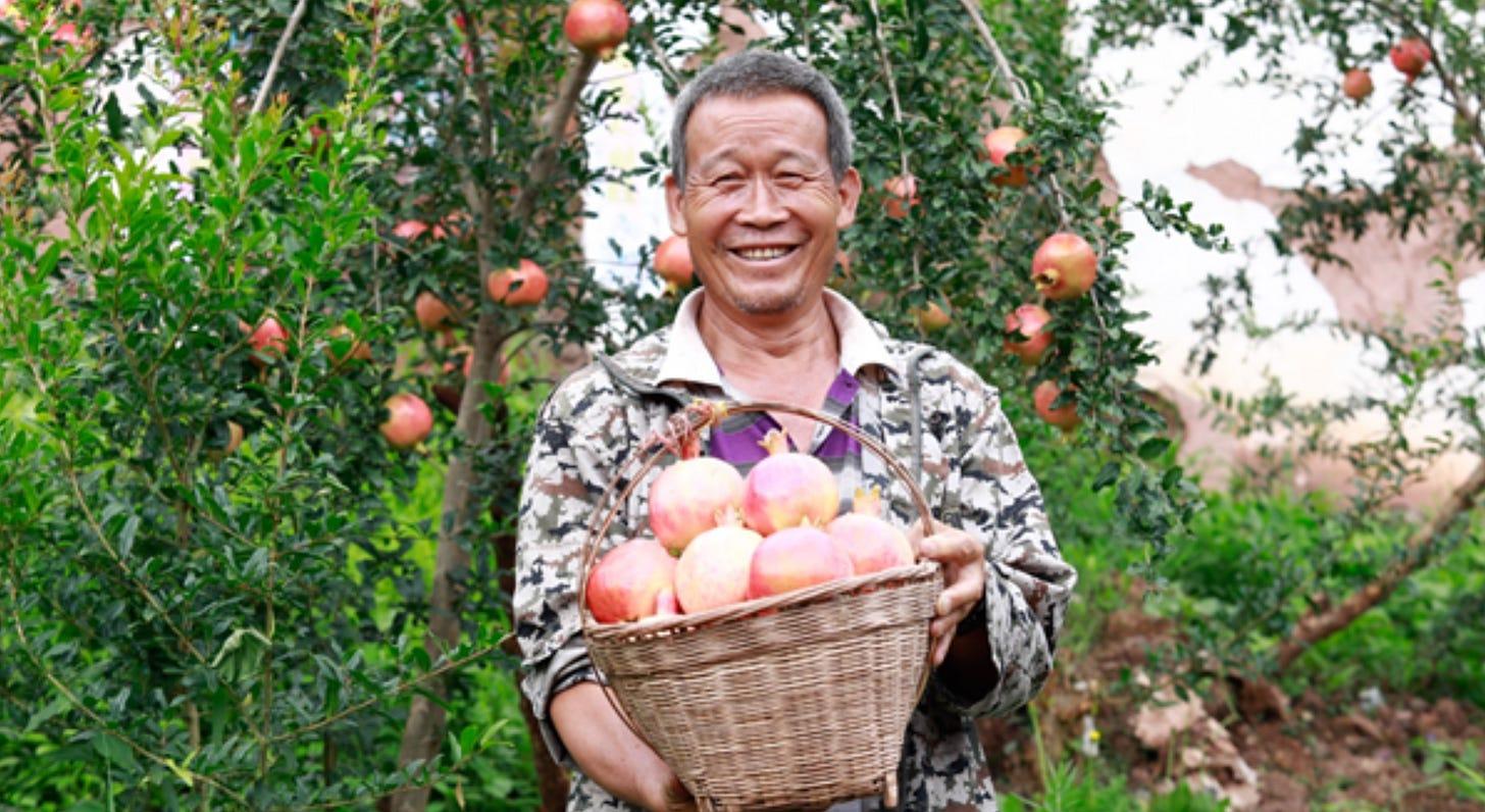 Pinduoduo's latest aim: Sell $145 billion of farm produce in 2025 |  TechCrunch