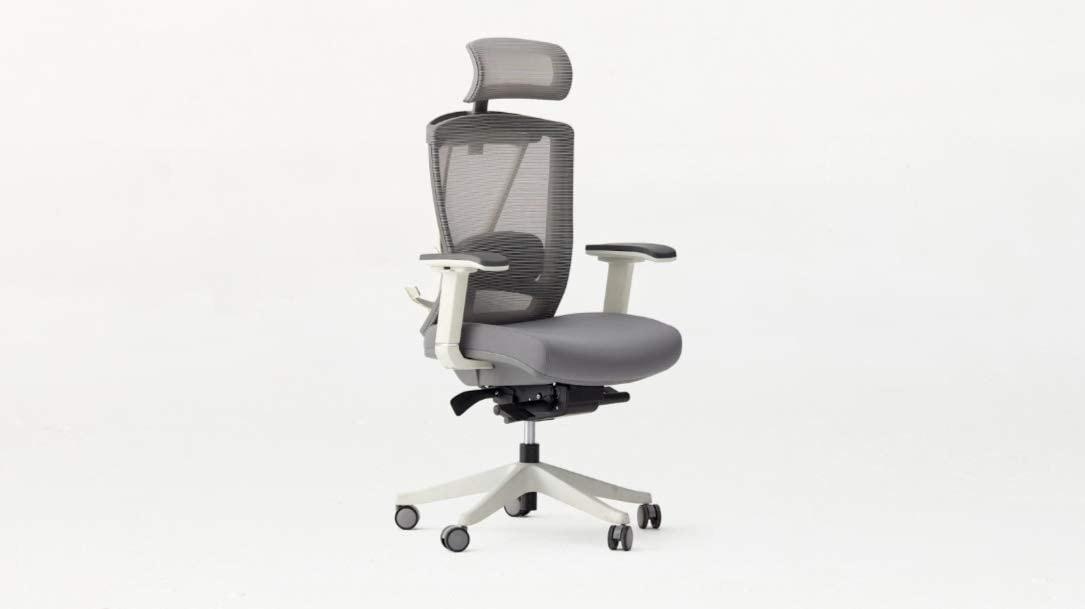 Amazon.com: Autonomous Ergo Chair 2 - Premium Ergonomic Office Chair - All  Black Adjustable Chair (Cool Gray): Kitchen & Dining