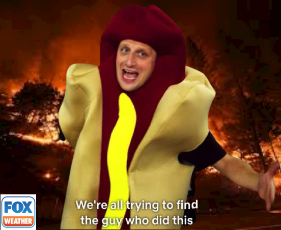 """A mockup of the """"We're all trying to find the guy who did this"""" hot dog man from I Think You Should Leave in front of a wildfire, with a Fox Weather logo in the bottom corner."""