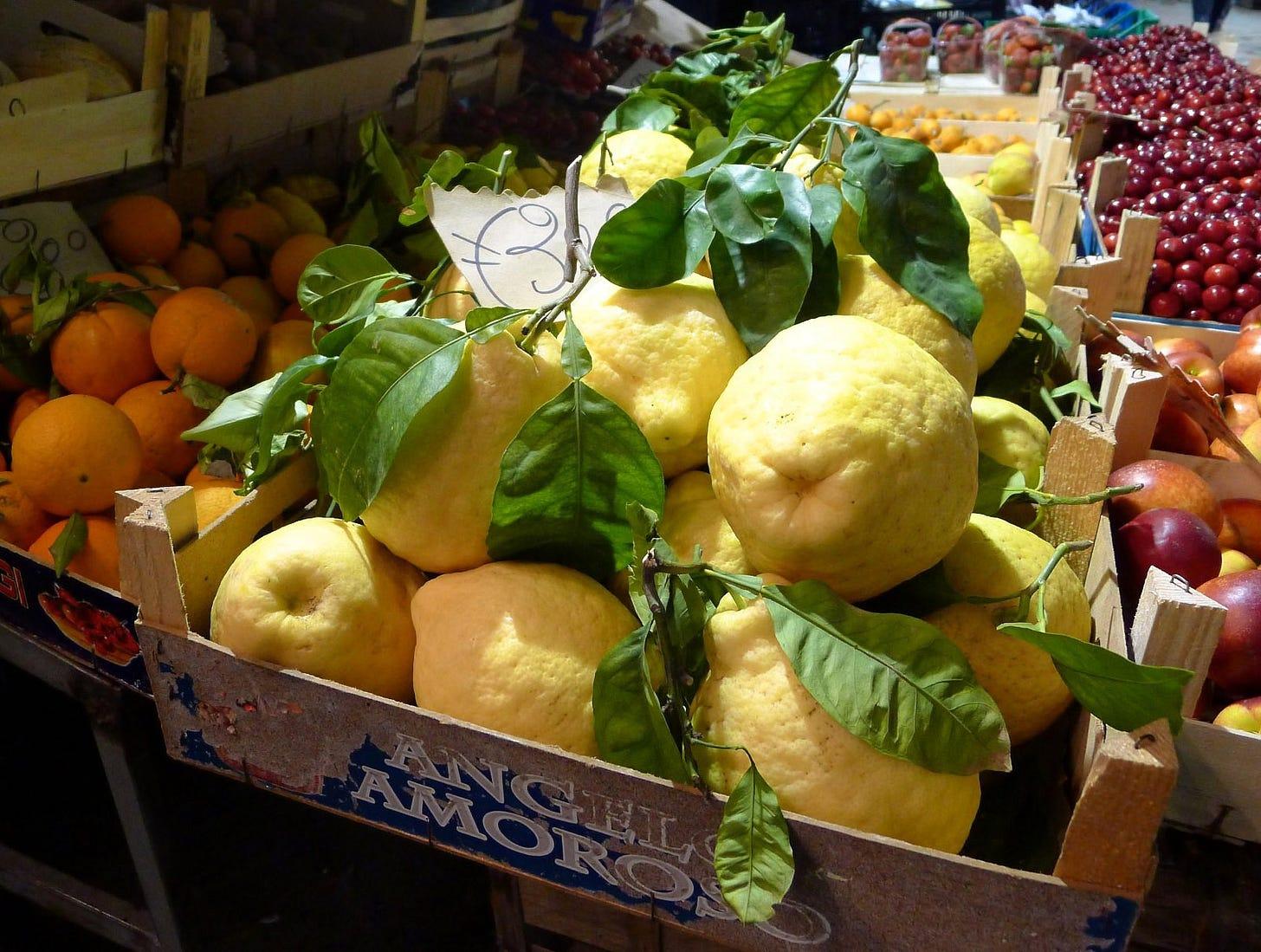 File:Limone di Sorrento.jpg - Wikimedia Commons