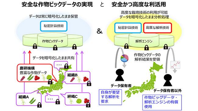 https://www.jacom.or.jp/saibai/images/nous20102927_2.jpg