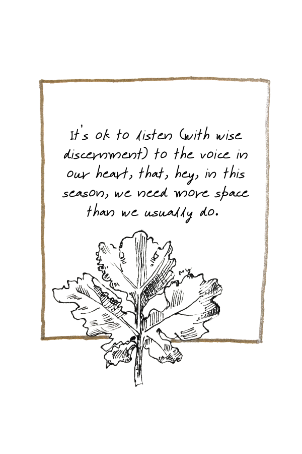 """hand-drawn line illustration of a leaf with a quote """"It's ok to listen (with wise discernment) to the voice in our heart, that, hey, in this season, we need more space than we usually do.""""  There's a gold coloured border around the quote and leaf"""