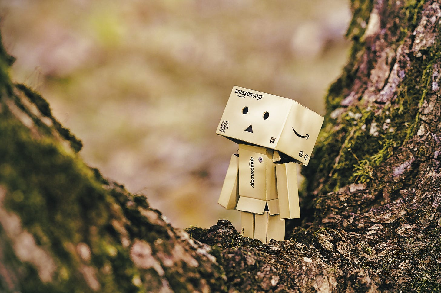 Picture of a figure made out of Amazon boxes, standing in the nook of a tree. Daniel Eledut / Unsplash