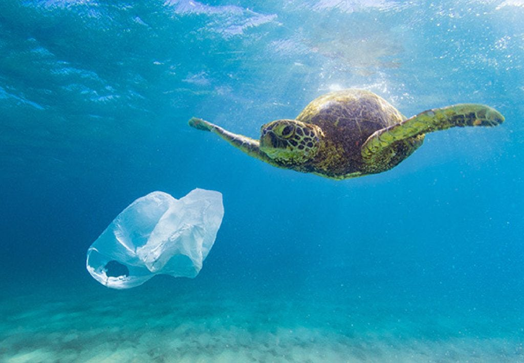 Five solutions to ocean plastic pollution - Recycle Track Systems