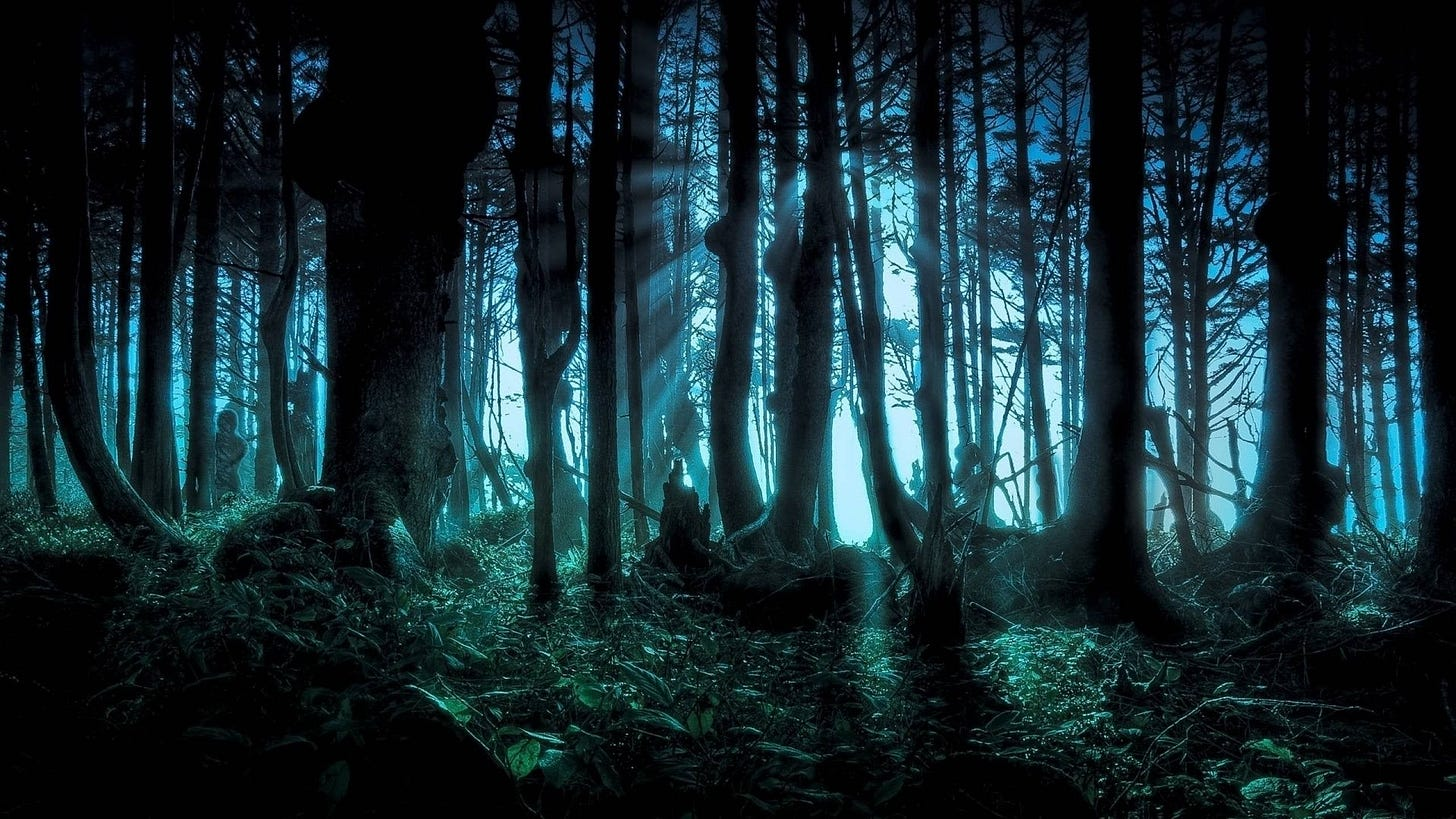2560 X 1440 Dark Forest Wallpapers - Top Free 2560 X 1440 Dark Forest  Backgrounds - WallpaperAccess