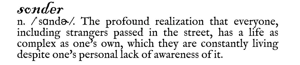 """Image of """"sonder"""" definition"""