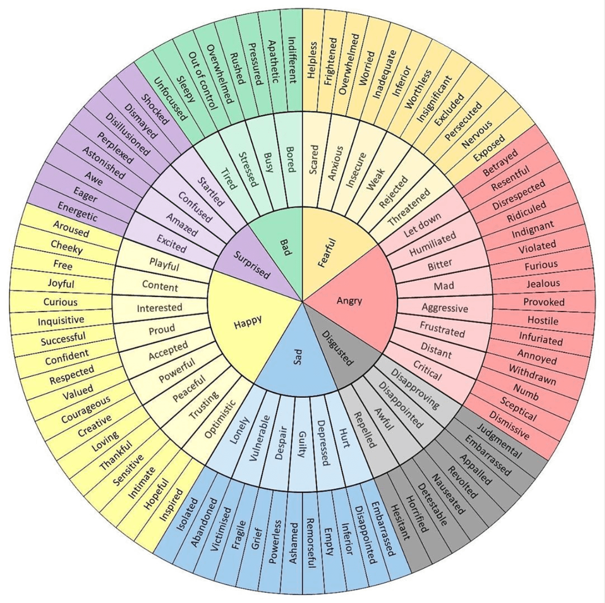 Emotion Wheel: What It Is and How to Use It | Fairygodboss