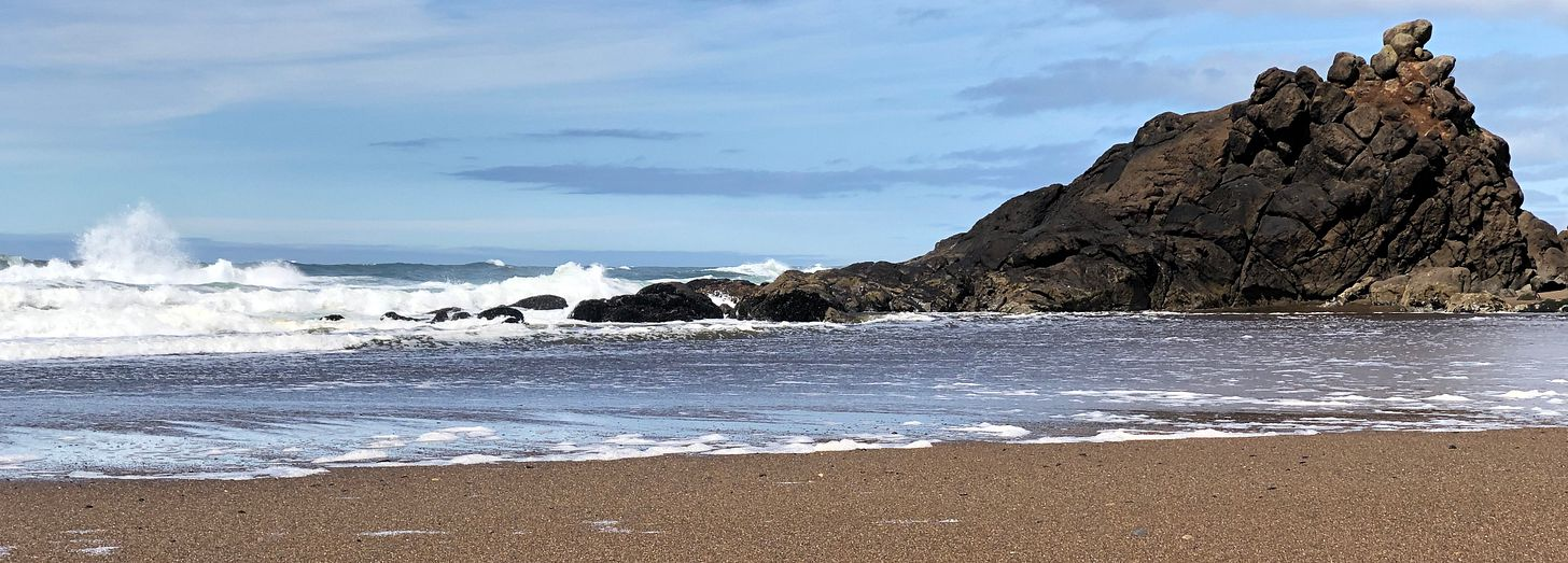 Oregon coast, not the Galápagos, but still the wild Pacific